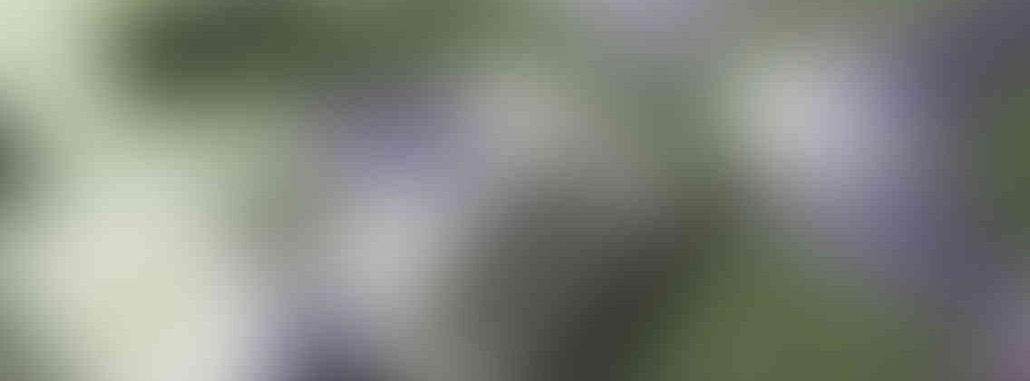 http://pixelmate.in/wp-content/uploads/2013/03/relay_slide_3_v01-1136x420.jpg
